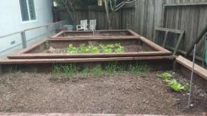 Partially planted garden.