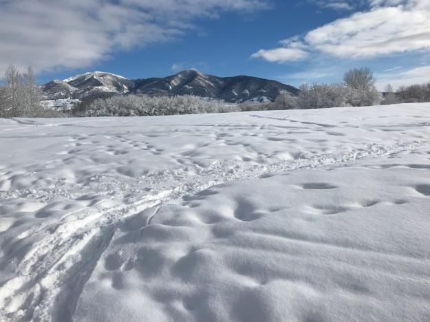Winter hike 9